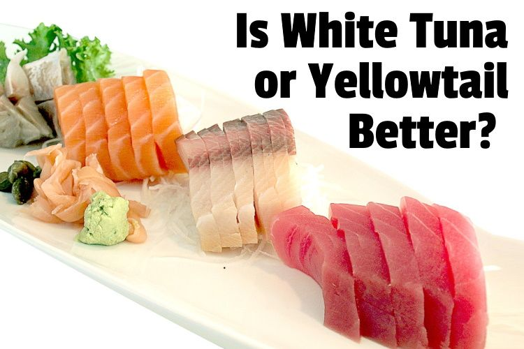 white and yellowtail lg